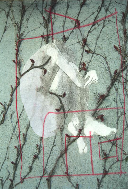 House, 2010. Digital print, Somerset paper. Dim. 22cm x 30cm.
